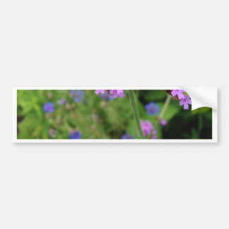 Flor púrpura de Penland: Sallie por mi lado Pegatina Para Coche