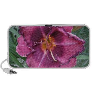 Flor púrpura del lirio laptop altavoces