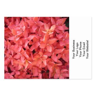 Flor roja de Ixora Tarjetas De Visita Grandes