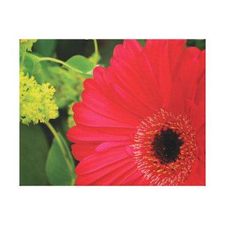 Flor roja de la foto hermosa del primer contra lienzo