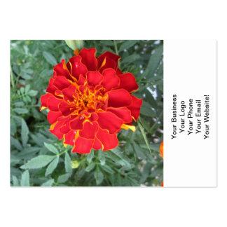 Flor roja de la maravilla tarjetas de visita grandes