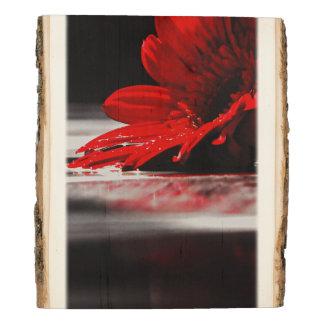 Flor roja de la margarita panel de madera