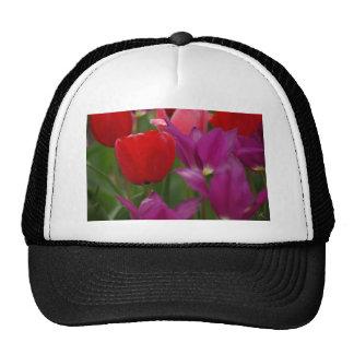 Flor roja gorras de camionero