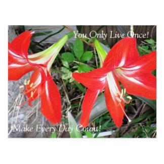Flor roja inspirada del lirio: Postal