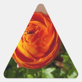 Flor roja que sale del marco pegatina triangular