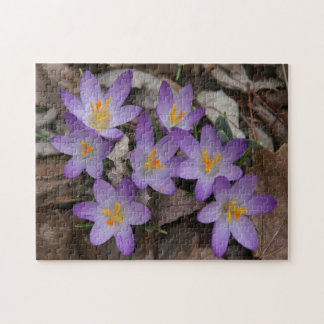 Flor, rompecabezas de la foto