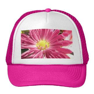 Flor rosada brillante de la margarita gorro de camionero
