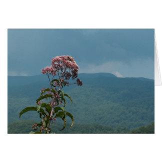 Flor rosada de la montaña tarjeta de felicitación