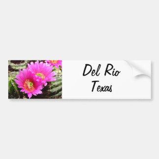 Flor rosada del cactus de los recuerdos de Del Río Pegatina De Parachoque