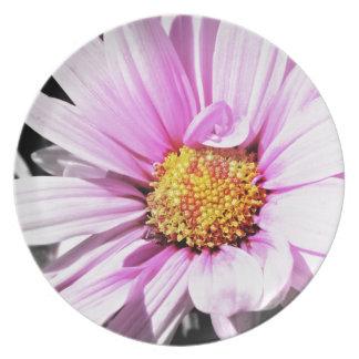 Flor rosada hermosa platos de comidas