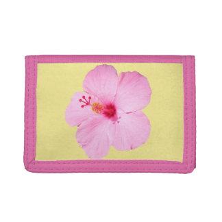 Flor tropical del hibisco rosado