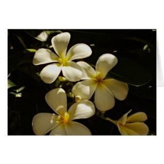 Flor tropical Notecard