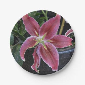 Flor tropical plato de papel