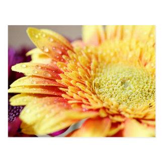 Flor y postal amarillas de las gotitas