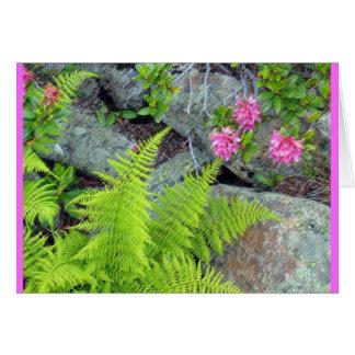 """""""Flora alpina """" Tarjeta De Felicitación"""