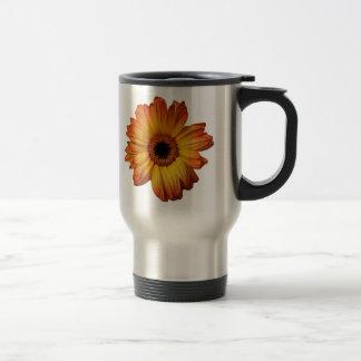 Floración anaranjada soleada de la flor del taza térmica