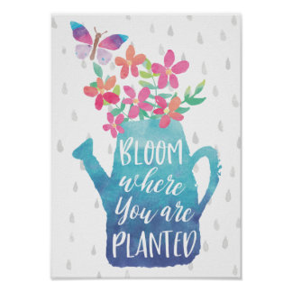 Floración donde le plantan póster