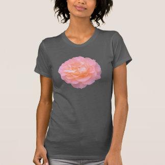 Floración donde usted está camiseta plantada