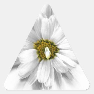 floración en sombras del blanco pegatina triangular