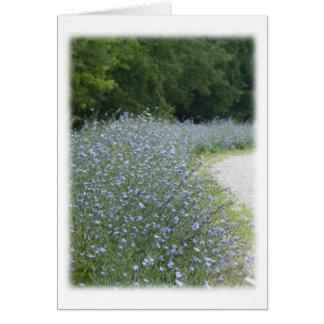 Floraciones de la flor de la achicoria en el borde tarjeta pequeña
