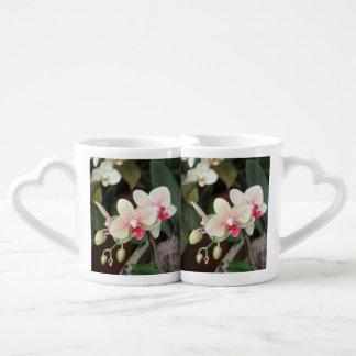 Floraciones de la orquídea taza para enamorados