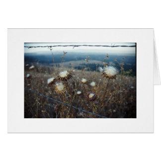 floral en blanco tarjeta pequeña