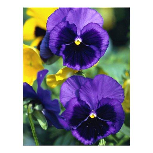 Floral, primer tarjetas publicitarias