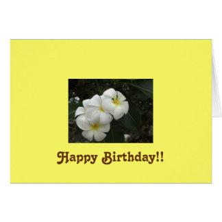 ¡Flores africanas feliz cumpleaños Tarjeton