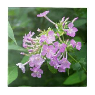Flores ahumadas de la montaña azulejo cuadrado pequeño