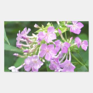 Flores ahumadas de la montaña pegatina rectangular