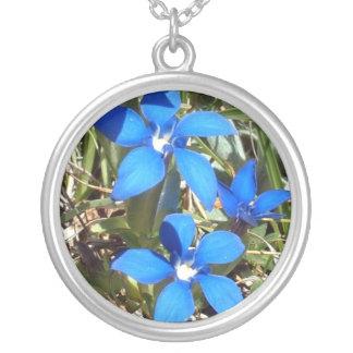 Flores alpinas de la genciana azul hermosa colgante redondo