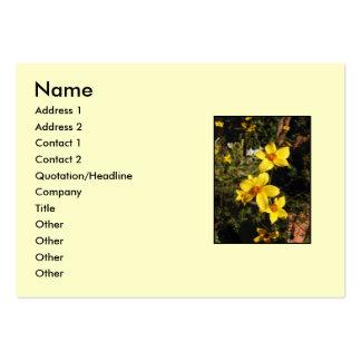 Flores amarillas. Bidens. En la crema Tarjetas De Visita Grandes