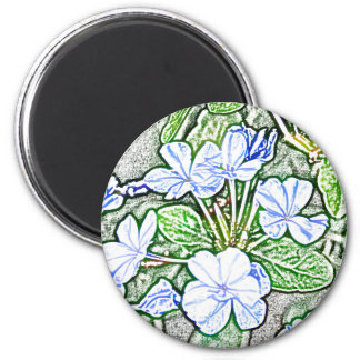 flores azules en la planta verde del grafito del b