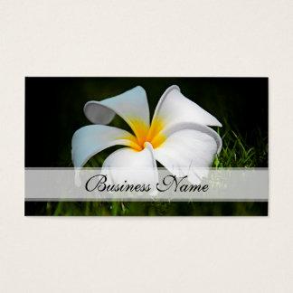 Flores blancas de Hawaii del Frangipani del Tarjeta De Visita