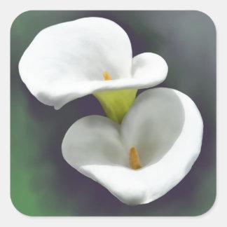 Flores blancas de la cala pegatina cuadrada