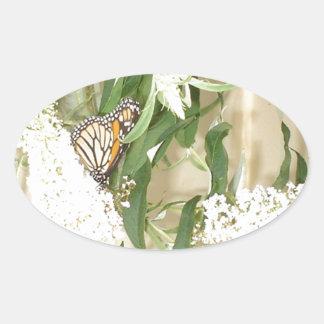 Flores blancas de la mariposa de los pegatinas pegatina ovalada