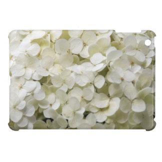 Flores blancas del Hydrangea