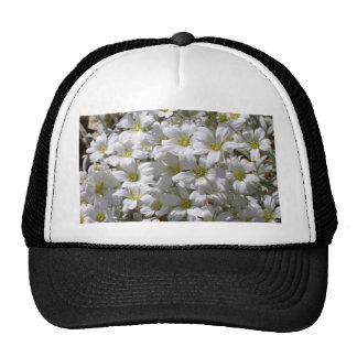 Flores blancas del verano gorra