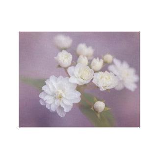Flores blancas delicadas con el fondo púrpura lienzo
