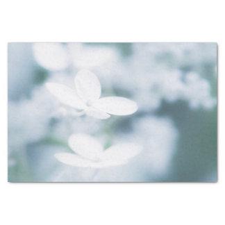 Flores blancos hermosos papel de seda