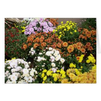 Flores coloridas del otoño felicitacion