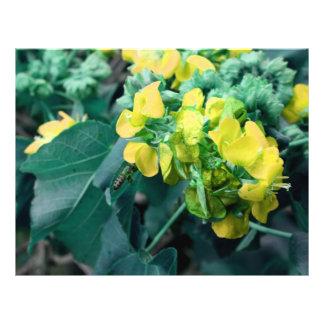 flores colorized amarillo con la abeja flyer a todo color