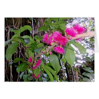 Flores de Apple de la montaña Tarjeton