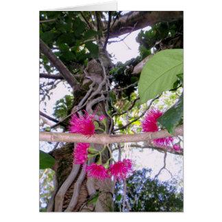 Flores de Apple de la montaña Tarjeta De Felicitación