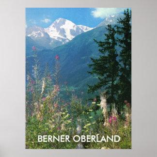 Flores de Berner Oberland, de las montañas y de la Póster