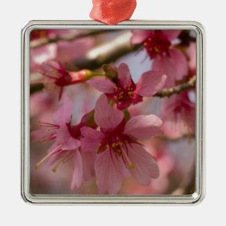Flores de cerezo ornamentos de reyes