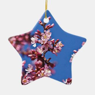 Flores de cerezo de Sakura que tocan el azul Adorno Navideño De Cerámica En Forma De Estrella