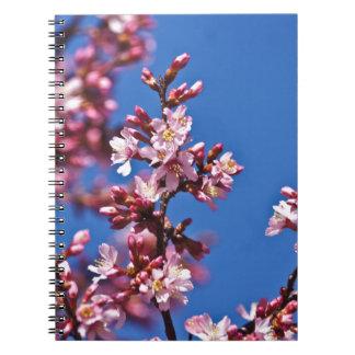 Flores de cerezo de Sakura que tocan el azul Libreta
