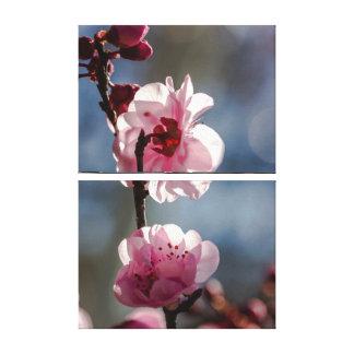 Flores de cerezo en el arte del tríptico de la sol
