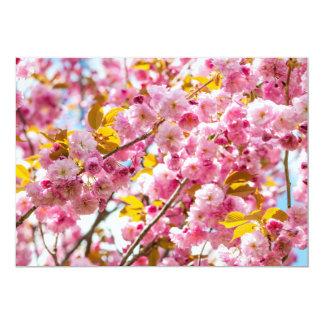 Flores de cerezo en ramas del cerezo de la anuncios personalizados